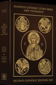 study-bible-nt